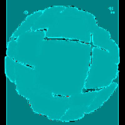 logo amorelli.net